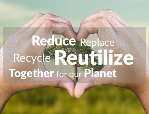 At Kizeo, The environment is at the heart of our priorities.